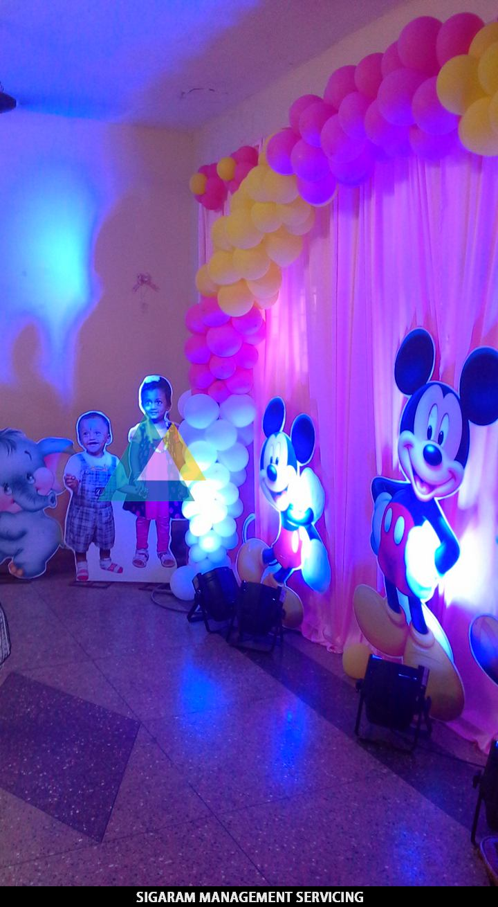 Birthday party Decoration at Home – Themed Birthday Parties in ...